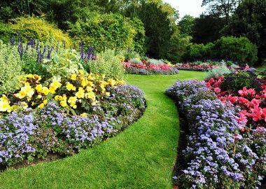 foto-ogrodnictwo-1