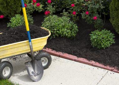 foto-ogrodnictwo-2